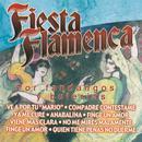 Fiesta Flamenca por Fandangos y Bulerías thumbnail