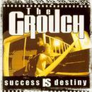 Success Is Destiny (Explicit) thumbnail