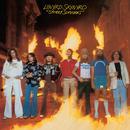 Street Survivors (2001 Reissue) thumbnail