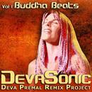 DevaSonic Volume 1: Buddha Beats thumbnail