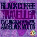 Traveller (Extended Mix) (Single) thumbnail