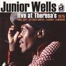 Live At Theresa's 1975  thumbnail