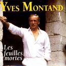 Les Feuilles Mortes (1995) thumbnail