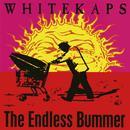 The Endless Bummer (Explicit) thumbnail
