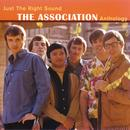 Just The Right Sound: The Association Anthology (Digital Version) thumbnail