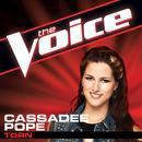 Torn (The Voice Performance) (Single) thumbnail
