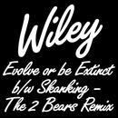 Evolve Or Be Extinct / Skanking (The 2 Bears Remix) thumbnail
