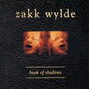 Book Of Shadows thumbnail
