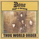 Thug World Order (Explicit) thumbnail