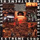 Extreme Conditions Demand Extreme Responses (Redux) thumbnail