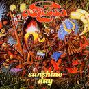 Sunshine Day: The Pye/Bronze Anthology thumbnail