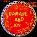 Damage And Joy thumbnail