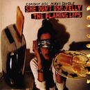 She Don't Use Jelly (Internet Maxi Single) thumbnail