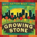 Growing Stone thumbnail