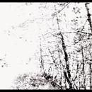 The White EP thumbnail