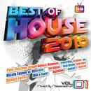 Best of House 2010 Vol.1 thumbnail