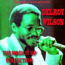 Delroy Wilson: The Mash It up Collection thumbnail