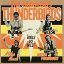 The Fabulous Thunderbirds thumbnail