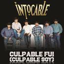 Culpable Fui (Culpable Soy) (En Vivo) (Single) thumbnail