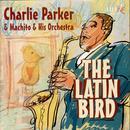The Latin Bird thumbnail