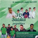 30 Salsas Pegaditas: Lo Nuevo Y Lo Mejor Del 2011 thumbnail
