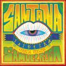 Saideira (Spanish Version) thumbnail