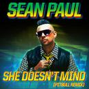 She Doesn't Mind (Pitbull Remix) (Single) thumbnail