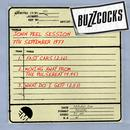 John Peel Session: 7th September 1977 thumbnail