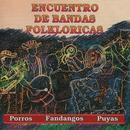 Encuentro De Bandas Folkloricas - Porros, Fandangos, Puyas thumbnail