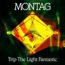 Trip The Light Fantastic b/w Again Again thumbnail
