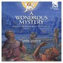 A Wondrous Mystery: Renaissance Choral Music For Christmas thumbnail