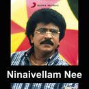 Ninaivellam Nee thumbnail