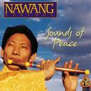 Sounds Of Peace thumbnail