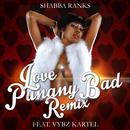 Love Punany Bad (Remix) thumbnail