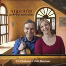 Nigunim: Hebrew Melodies thumbnail