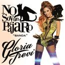 No Soy Un Pájaro (Banda) (Single) thumbnail