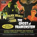 Salter / Skinner: Sherlock Holmes And The Voice Of Terror thumbnail