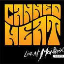 Live at Montreux 1973 thumbnail