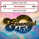 I Really Love You /What Do You Do (Digital 45) thumbnail