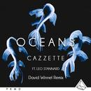 Oceans (Dave Winnel Remix) (Single) thumbnail