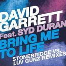 Bring Me To Life (StoneBridge Vs. Luv Gunz Remixes) thumbnail