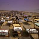 A Momentary Lapse Of Reason thumbnail