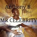 Mr Celebrity (Single) thumbnail