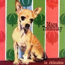 Le Chihuahua thumbnail