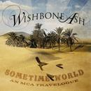 Sometime World: An MCA Travelogue thumbnail
