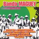 Las Clasicas Banda Maguey thumbnail
