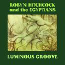 Luminous Groove thumbnail