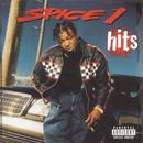Best Of Spice 1, Vol. 1 thumbnail