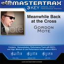 Meanwhile Back At The Cross (Performance Tracks) - EP thumbnail