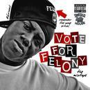 Vote For Felony thumbnail